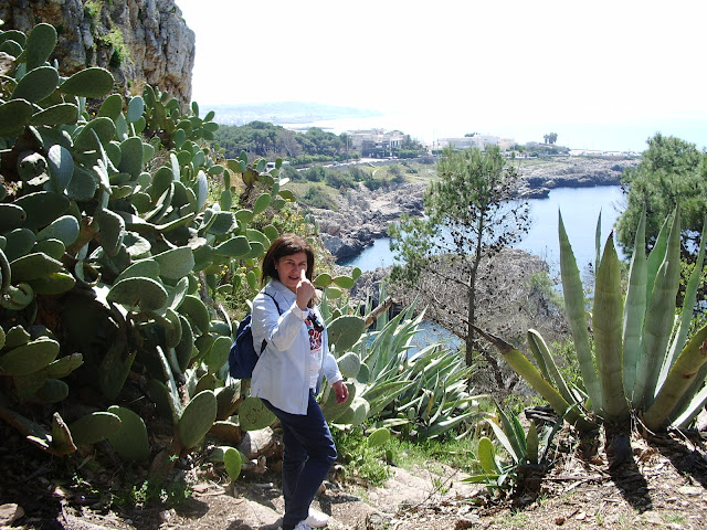 Vacanze in Puglia Porto Selvaggio