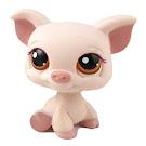 Littlest Pet Shop Special Pig (#No #) Pet