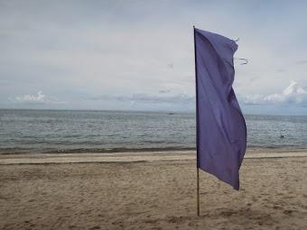 Laiya Coco Grove Beach Resort: a pleasant and family-friendly beach destination