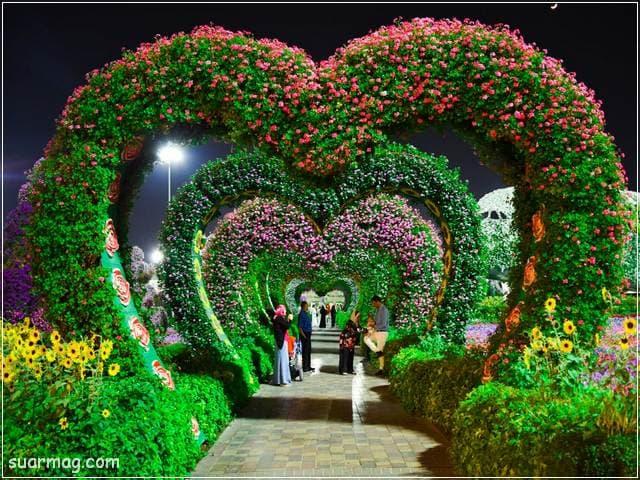 صور زهور 10 | Flowers Images 10