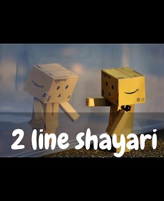2 line Shayari Hindi