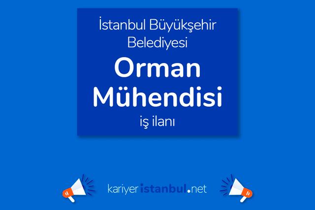 İstanbul Büyükşehir Belediyesi, orman mühendisi alacak. İBB Kariyer iş ilanı kriterleri neler? Detaylar kariyeristanbul.net'te!