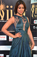 Shriya Saran in Beautiful Transparent Dark Gown IIFA Utsavam Awards 2017 044.JPG