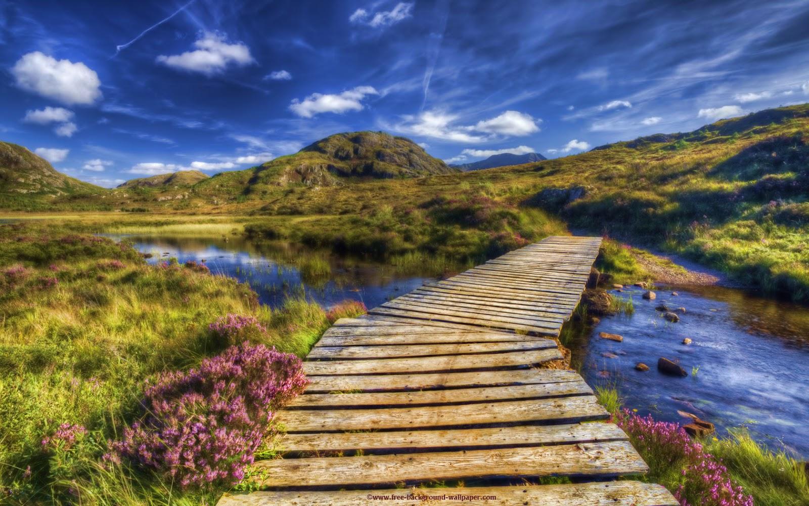 Critter Sitter's Blog: Hebrides and Scotland