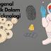 Mengenal Forensik Dalam Dunia Teknologi
