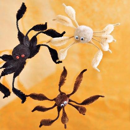 Awesome Arachnids