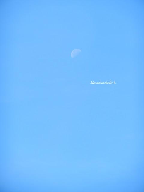 Lune et ciel bleu  - Aube - Champagne Ardenne - France