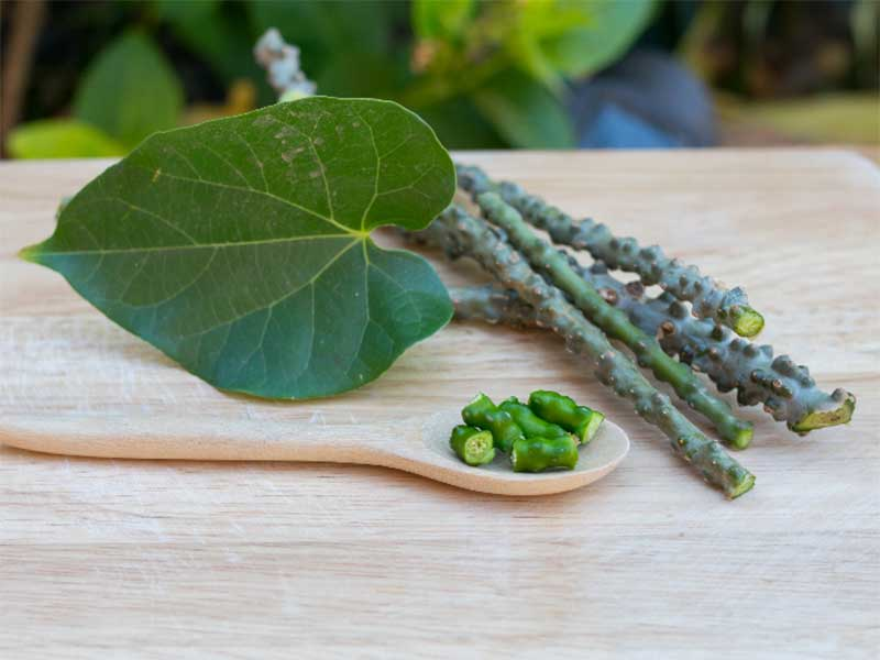 Top 4 Science-Backed Health Benefits Of Giloy