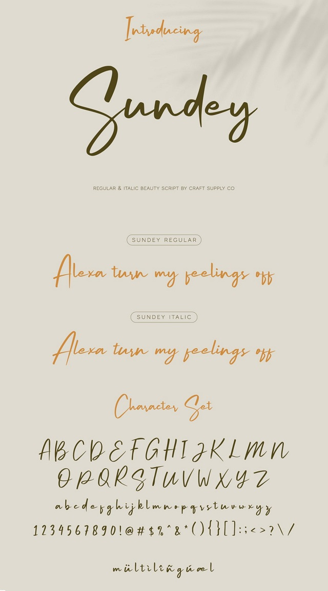 Handwirting Script Font