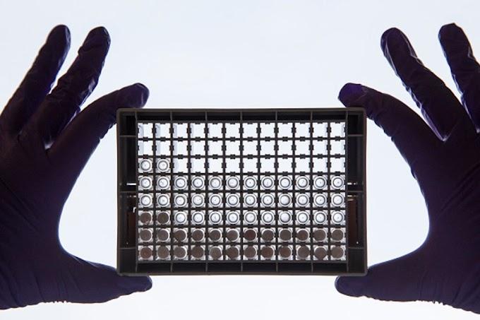Las biotecnologías que combaten el cáncer aumentan un 1.000%