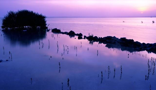 Purple Island: A beautiful natural wonder in Qatar that is worth-visiting!