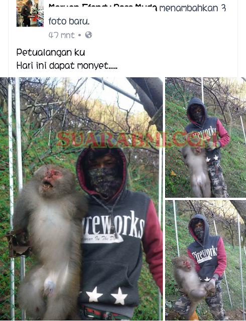 TKL Ini Berburu Monyet Di Taiwan dan Statusnya ...