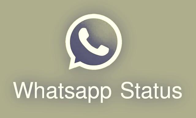 হোয়াটসঅ্যাপে শেয়ার করা স্ট্যাটাস শুধুমাত্র আপনার পছন্দের ব্যক্তিরাই দেখতে পাবে   Whatsapp Status Customisation