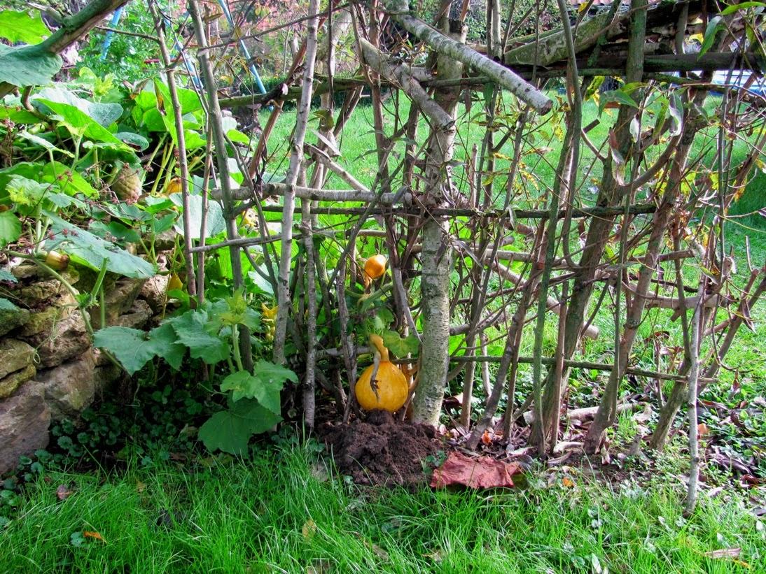 Super Garten-anders: Weidentor im romantischen Garten #YU_54