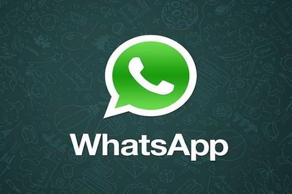 WhatsApp Messenger v2.19.354 Mod (Dark With Privacy)