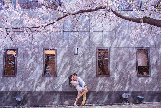 海外婚紗京都櫻花白川浪漫自然攝影師推薦