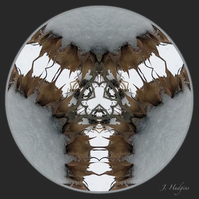 Sunflower in Snow Mandala