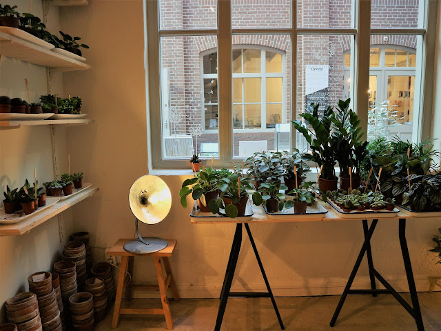 Amsterdam / Atelier rue verte / The Gathershop 3 /