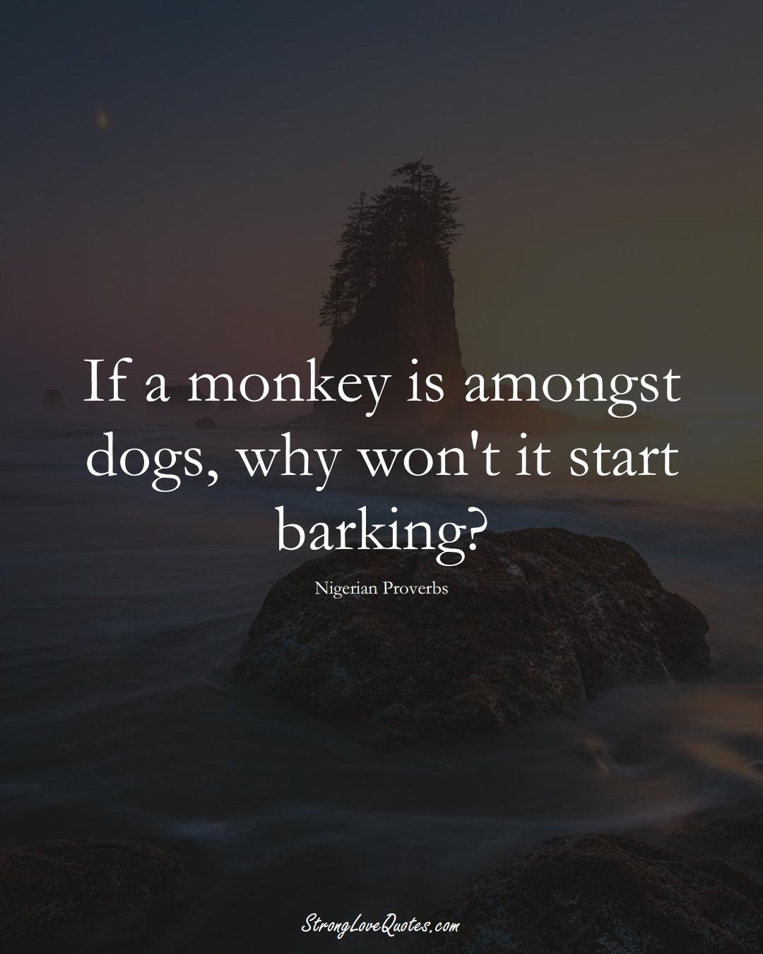 If a monkey is amongst dogs, why won't it start barking? (Nigerian Sayings);  #AfricanSayings
