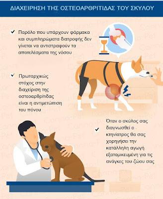 Διαχείριση οστεοαρθρίτιδας