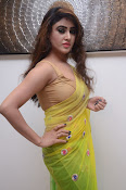 Sony Charista sizzling look in saree-thumbnail-20