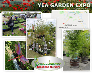Bamboo Creations Victoria attending the Yea Garden Expo in september 2019