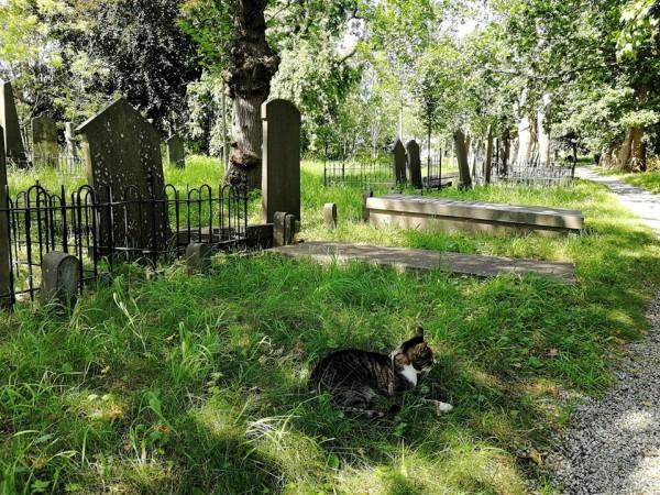 begraafplaats leiden