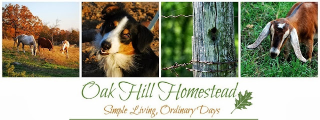 Oak Hill Homestead's top ten posts from self-sufficiency, simple living and homesteading.