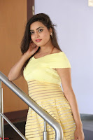 Shipra gaur in V Neck short Yellow Dress ~  016.JPG
