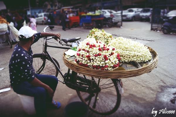 Vanzator-de-flori-India