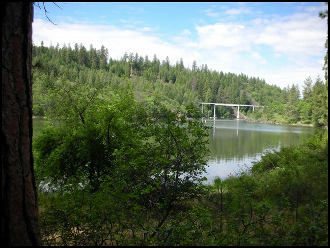 Fishing Riverside Near Ca