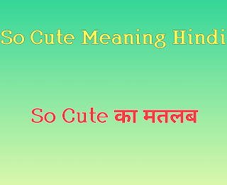 So cute meaning in hindi