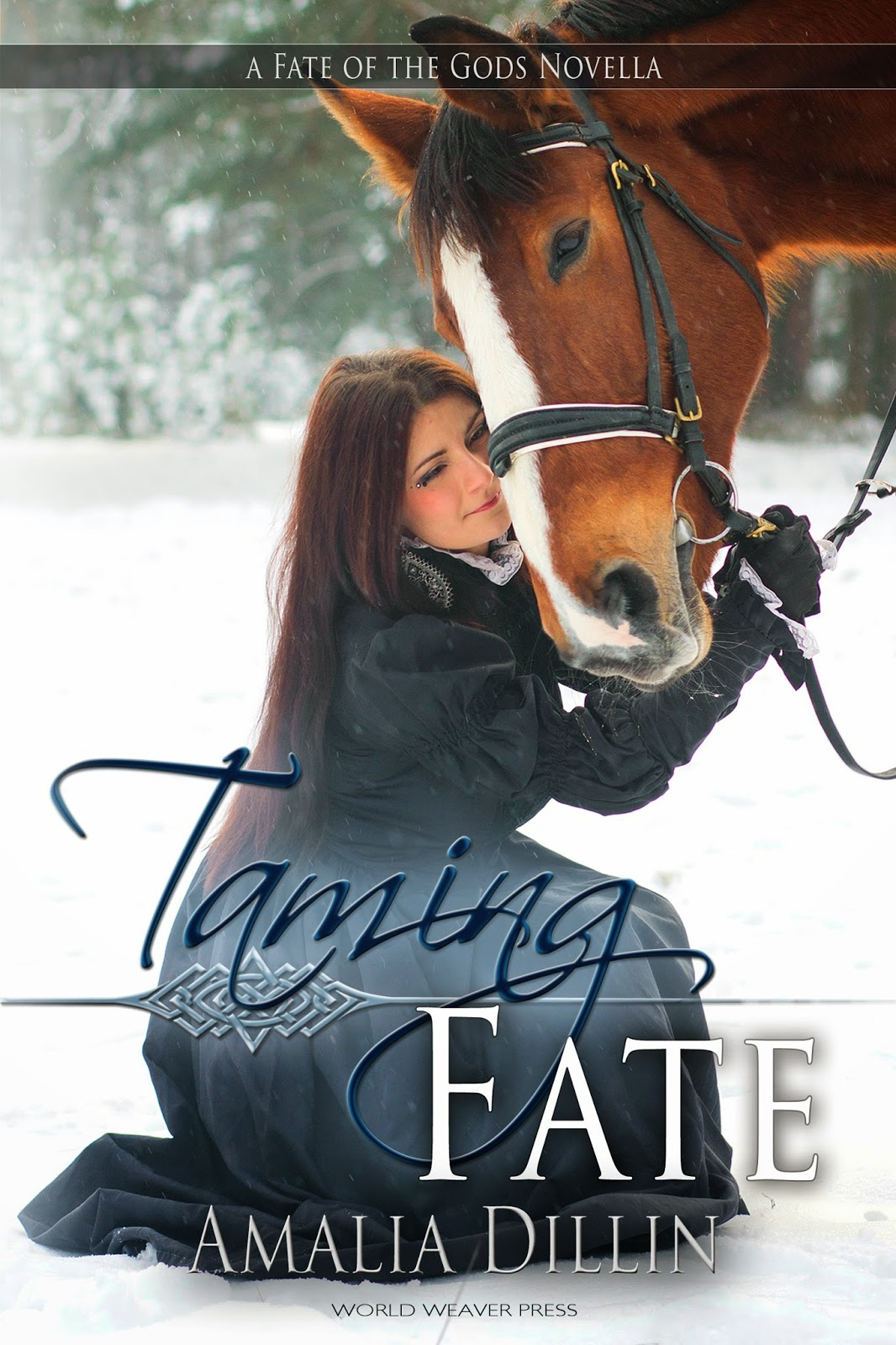 Taming Fate by Amalia Dillin: Character Interview