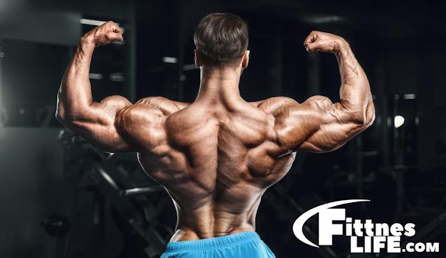 كم عدد التكرارات اللازمة لضخامة العضلات