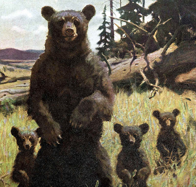 a Philip R. Goodwin illustration of a bear with cubs standing up in a field to look