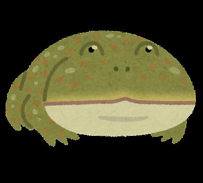 マルメタピオカガエルのイラスト