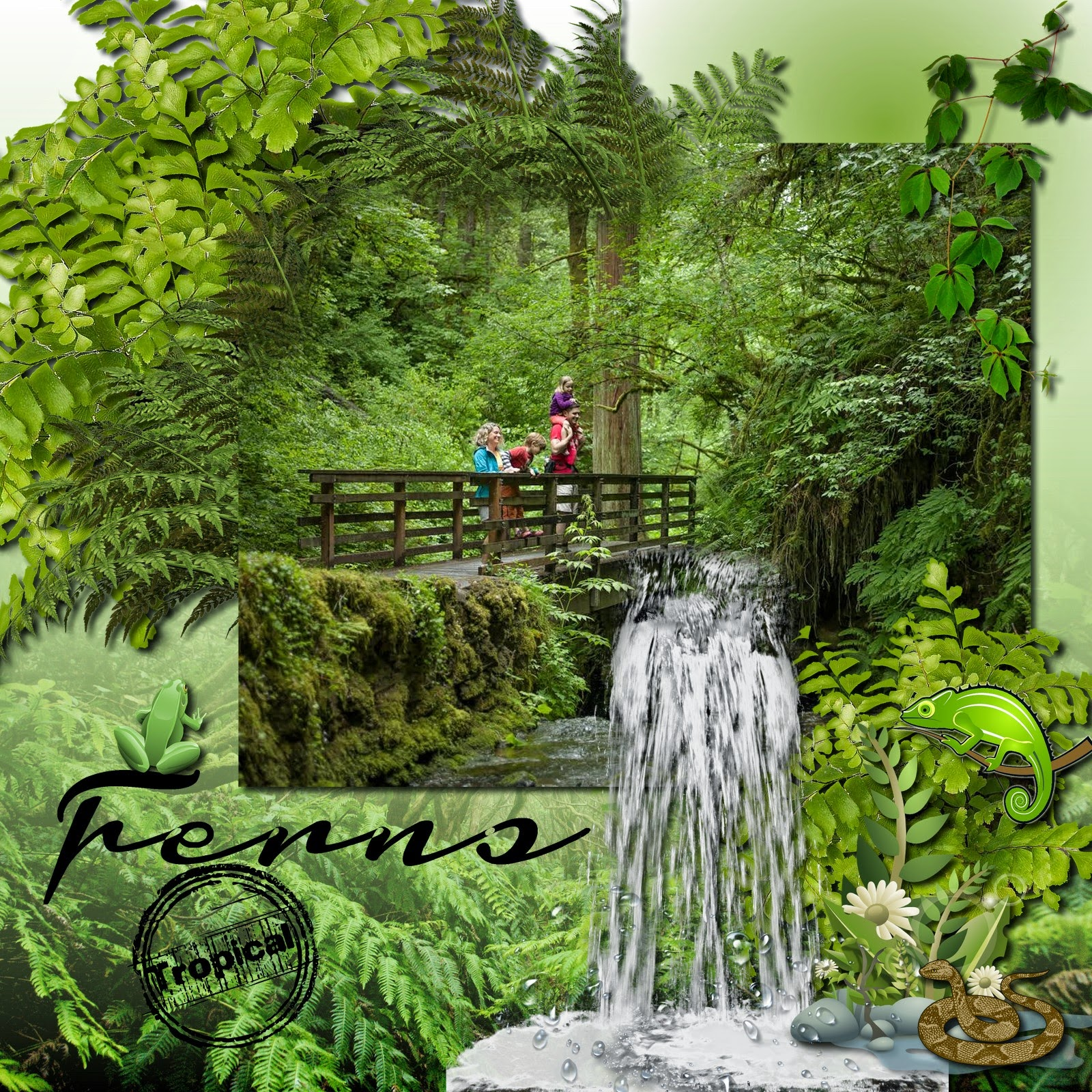 Rainforest Freebies Occidental Grand Papa O Deals