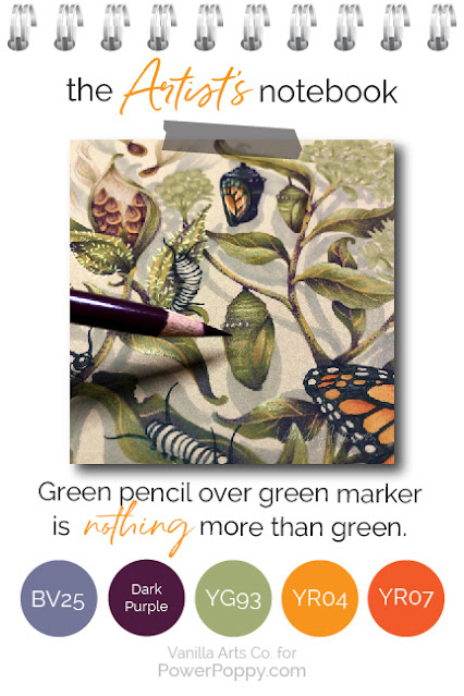 Want to improve your Copic Marker or colored pencil with more sophisticated color and blending combinations? Power Poppy's guest author Amy Shulke from VanillaArts.com offers artistic coloring tips for Copic Markers or colored pencil. | VanillaArts.com | #realistic #howtocolor #copic