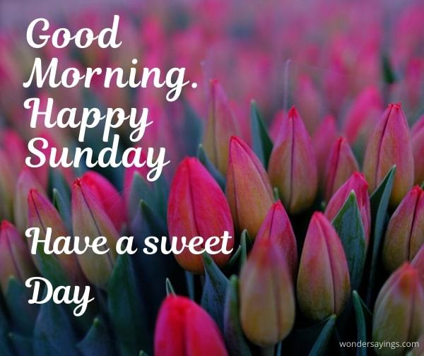 good-morning-Sunday