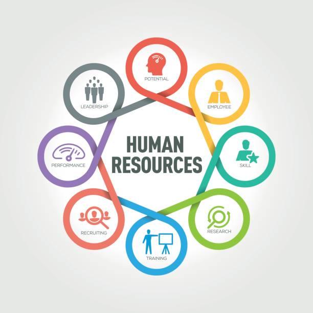 Human resource management, business, marketing work - Creative work