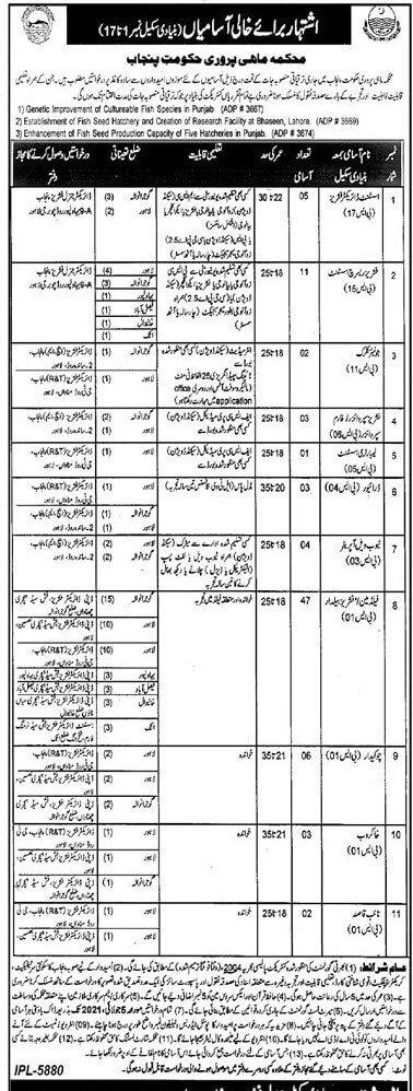 Fisheries Department Punjab Latest Jobs 2021 in Pakistan