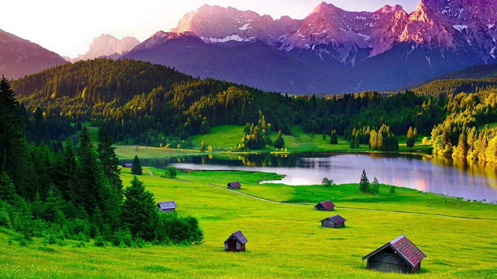 hình nền thung lũng núi đồi và cánh đồng cỏ đẹp