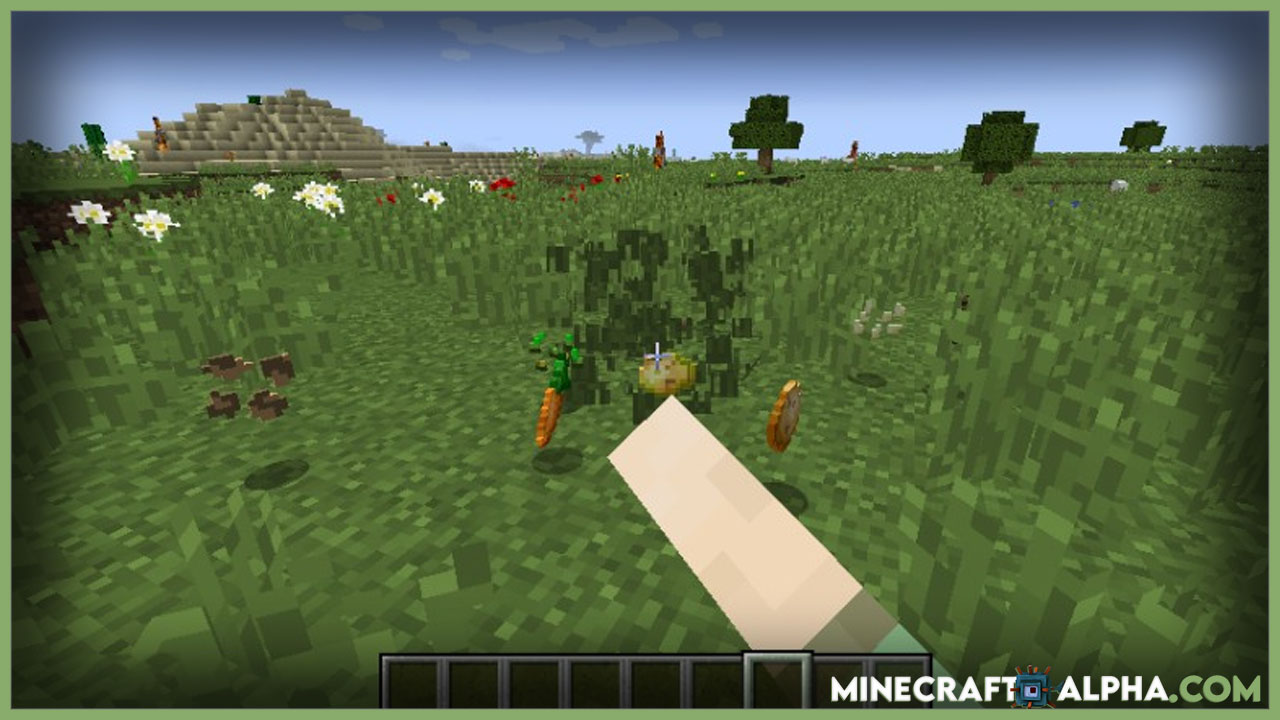 Minecraft Seed Drop Mod 1.17.1(Seed Types Dropable From Grass)