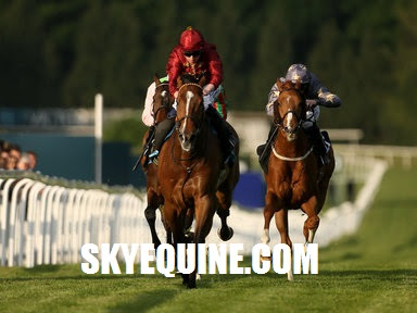 sky equine, racing tips