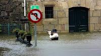 Inundación. Pastor Aguiar