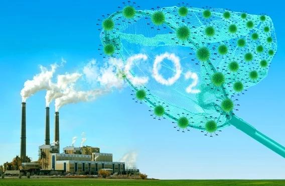 Una solución para quitar el Co2 del planeta