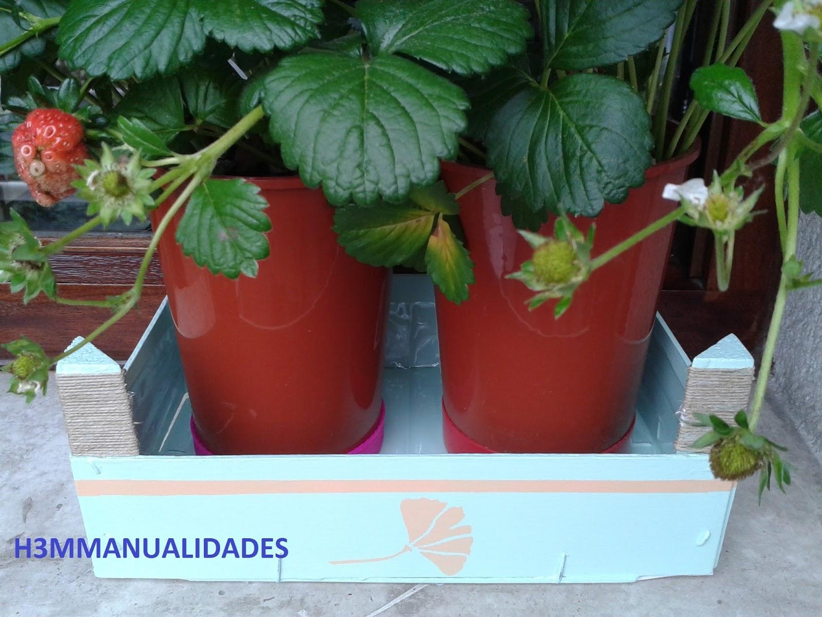 H3m manualidades caja de fresas ya fuera de temporada - Cajas de frutas ...