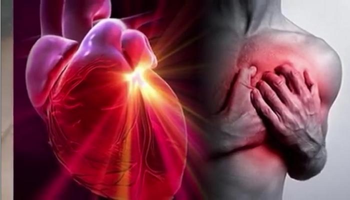 Leche de semillas de calabaza protegen nuestro sistema cardio vascular