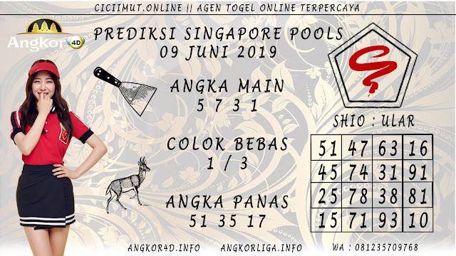 PREDIKSI SINGAPORE POOLS 09 JUNI 2019
