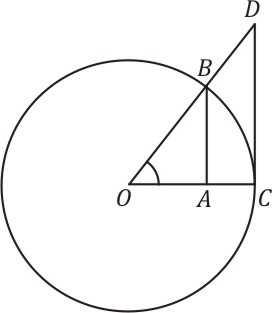 Os significados dos nomes atuais das funções trigonométricas são claros a partir de sua interpretação geométrica